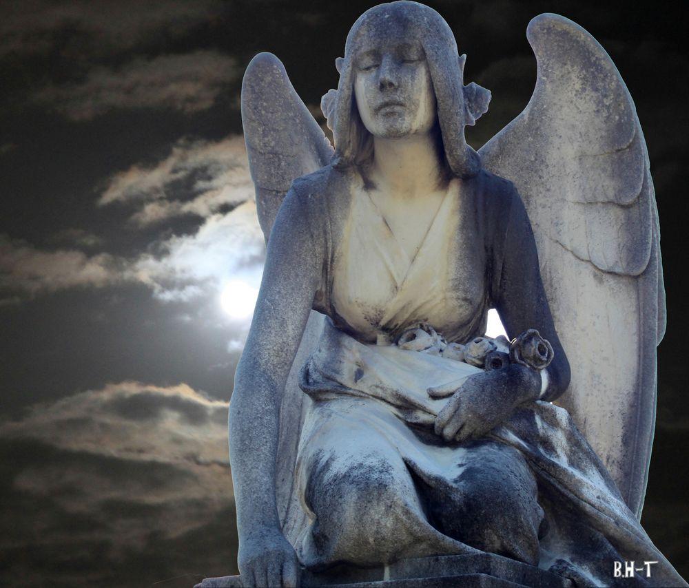 Engel im Mondschein