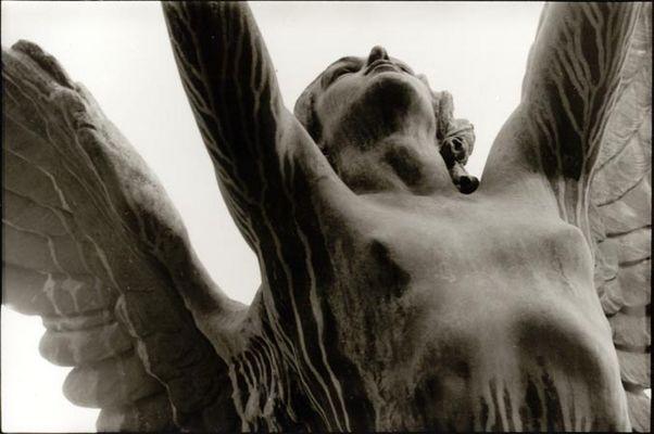 Engel, Roma