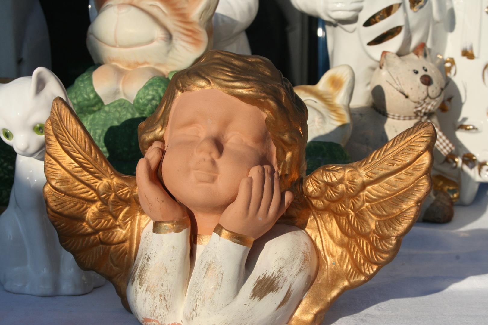 Engel sonnt sich