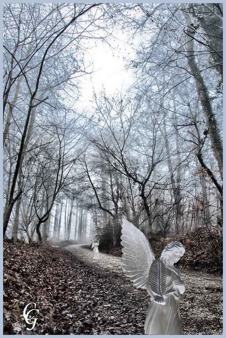 Engel Spaziergang