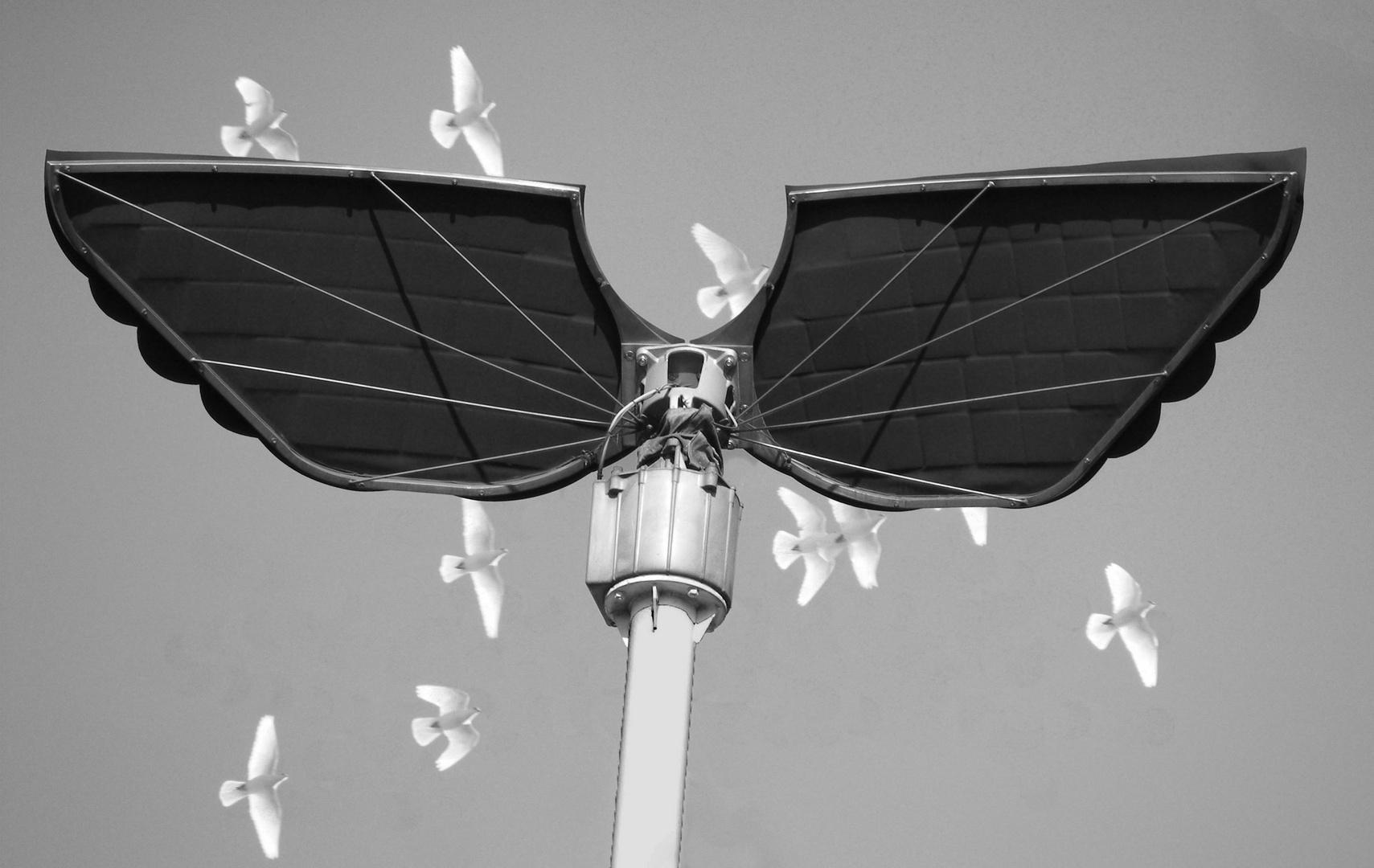 Engel und Tauben