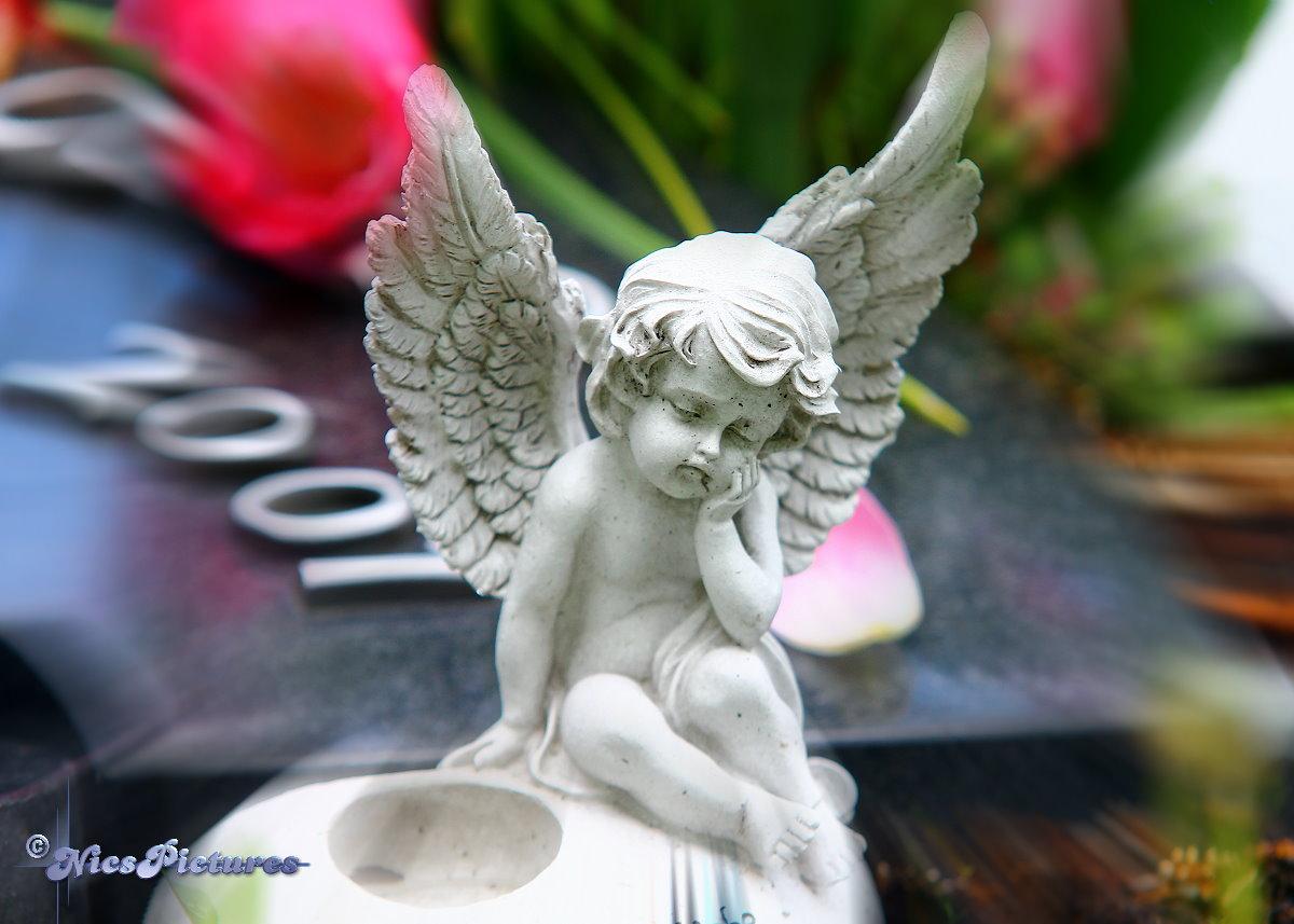 Engel unsere stillen begleiter...