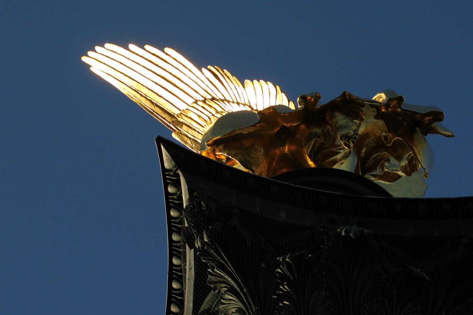 Engel unter den Flügel geschaut