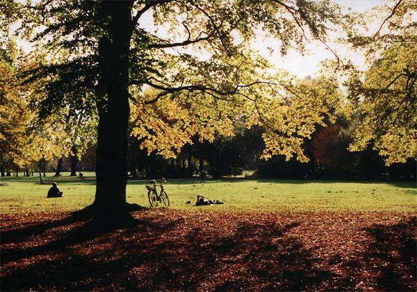 Englischer Garten im Oktober