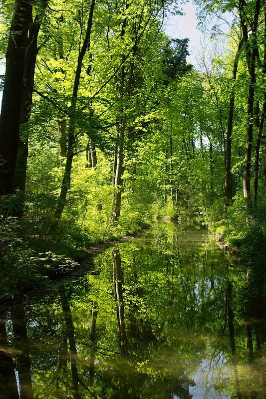 Englischer Garten München 2