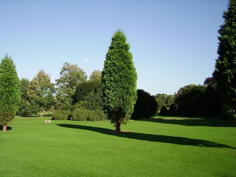 Englischer Park bei London