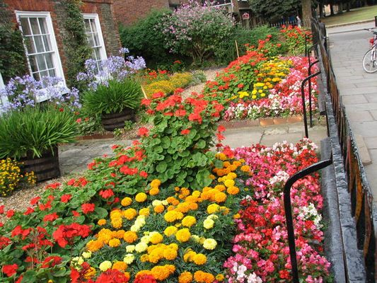 englischer Vorgarten