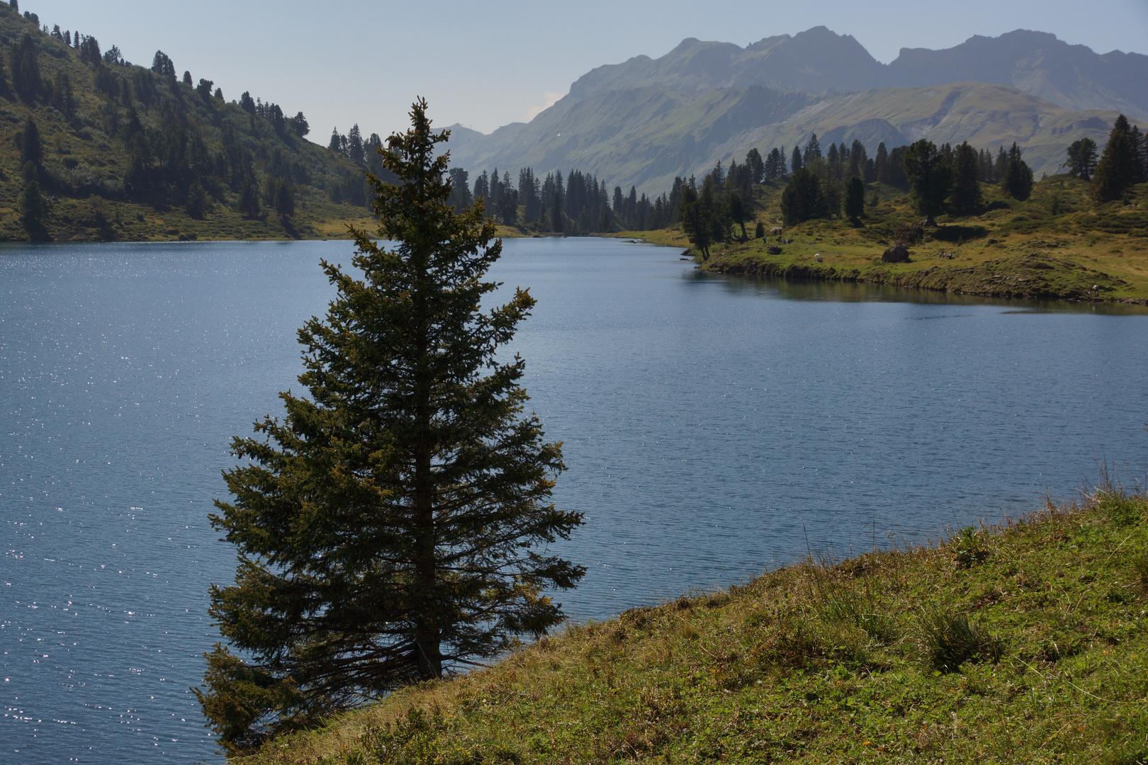 Engstlensee im Berner Oberland