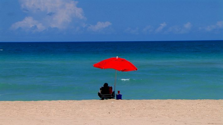 enjoy Florida