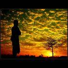 Enjoying GOD Creation #2...