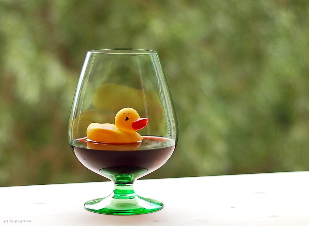 Ente in Rotweinsoße