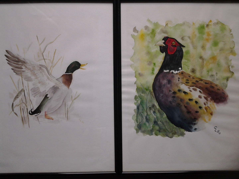 Ente und Fasan