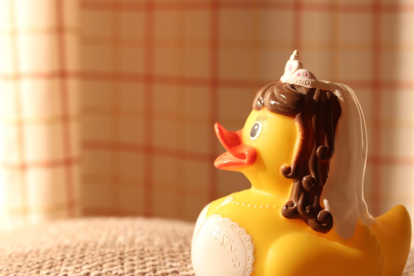 Entenfrau sieht erfreut in die Zukunft