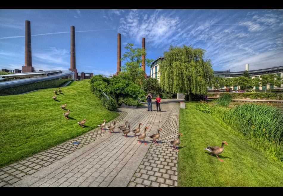Entenhausen - Stadtteil Wolfsburg