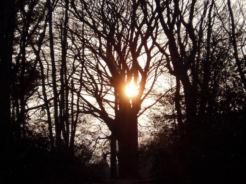 Entgegen der Sonne