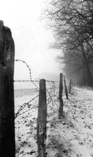entlang der grenze