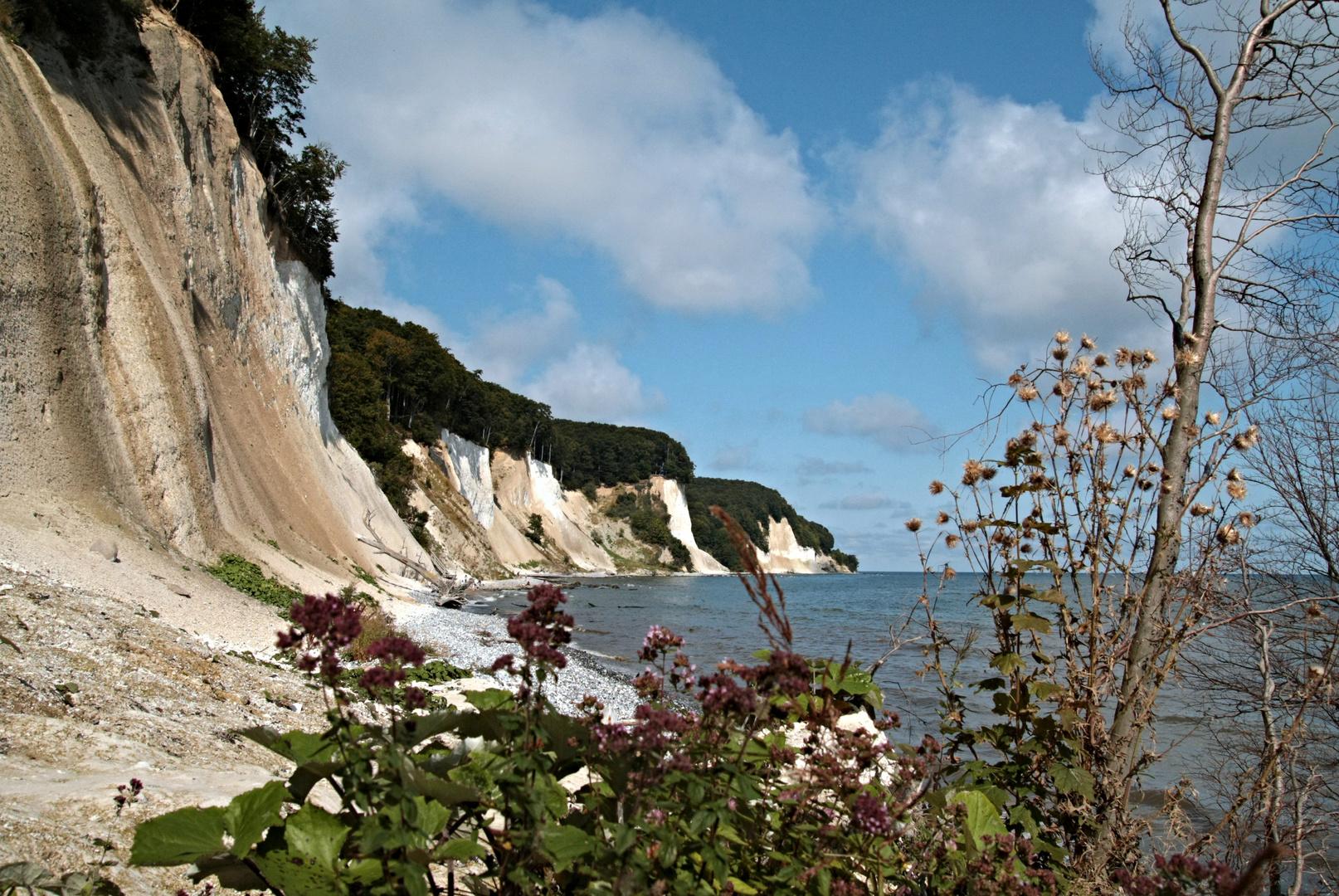 ...entlang der Kreideküste 3