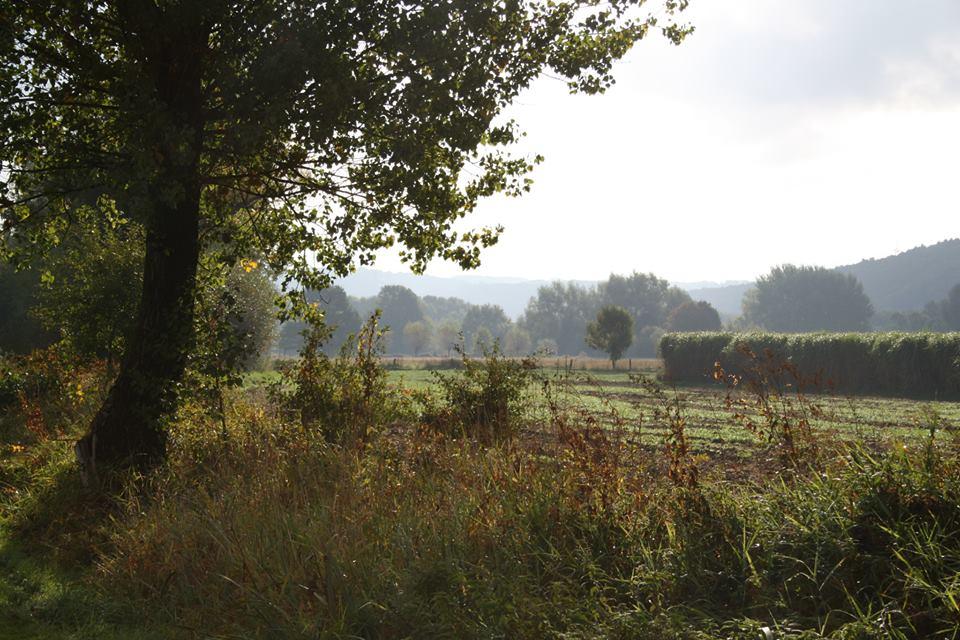 Entlang der Ruhr im Herbst