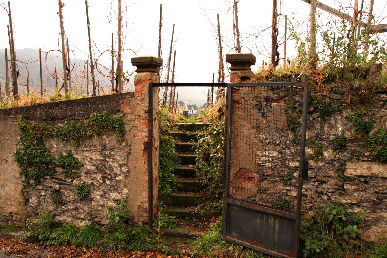 Entrance of a vineyard
