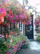 Entrance to the Pub Biddestone Arms, Biddestone, Wiltshire