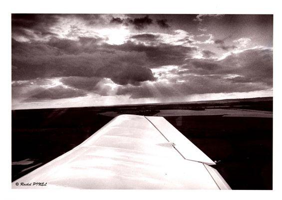 entre aile et ciel