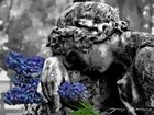 Entre flores de colores...