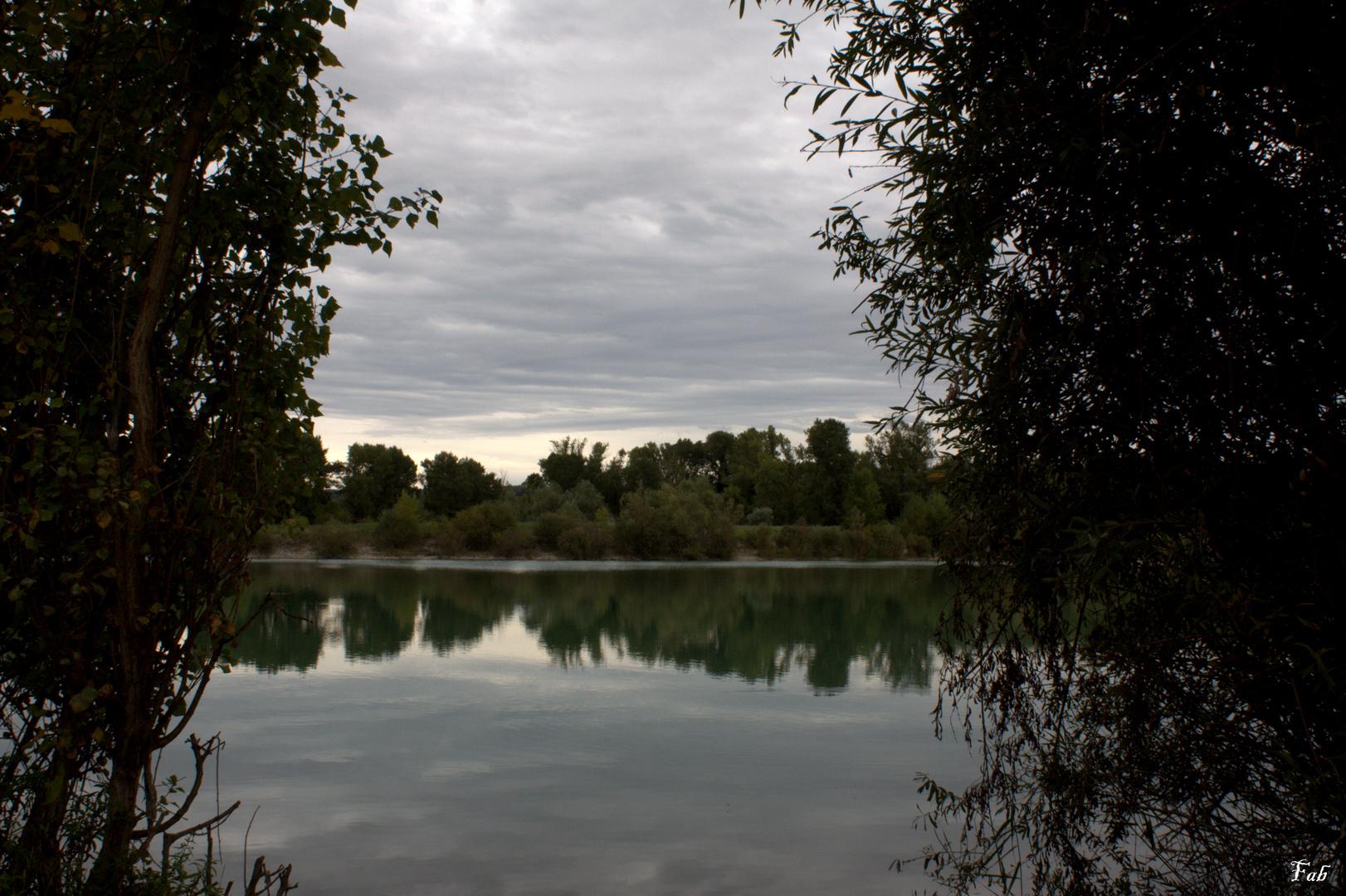 Entre les arbres, le lac