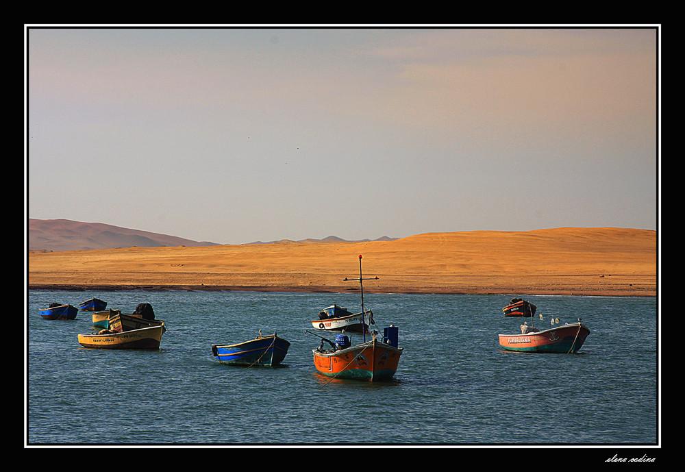 Entre Mar y Desierto