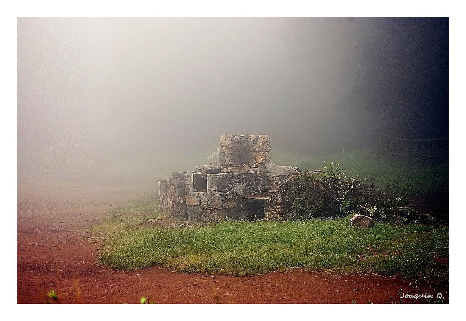 Entre niebla (01)