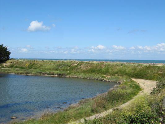 Entre polder et mer