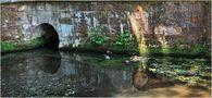 FR: Entre soleil et eau... by dominati simone