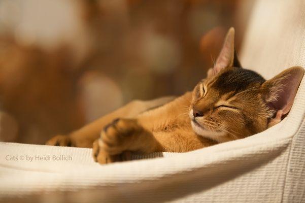 Entspanntes Wochenende