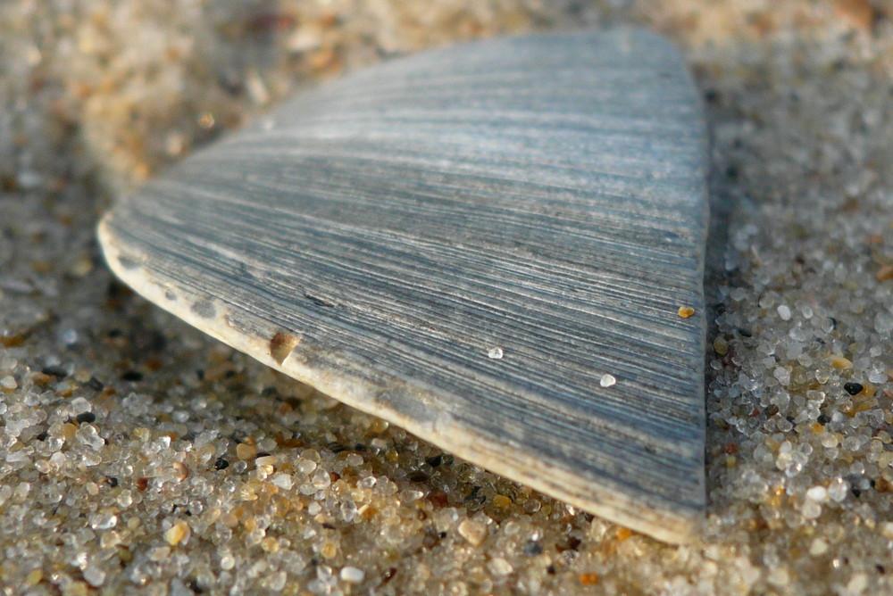 Entstehung des Sandes