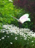 Envole -toi , joli papillon ...