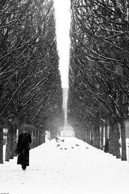 Envolée parisienne sous la neige