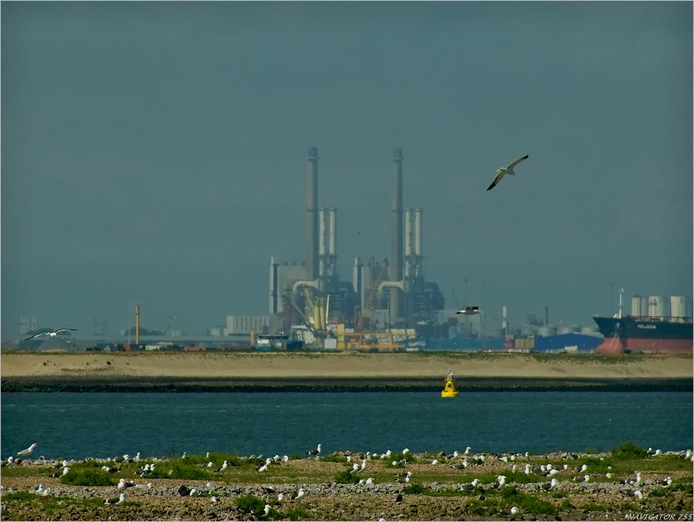 EON Kraftwerk / Europoort / Rotterdam.