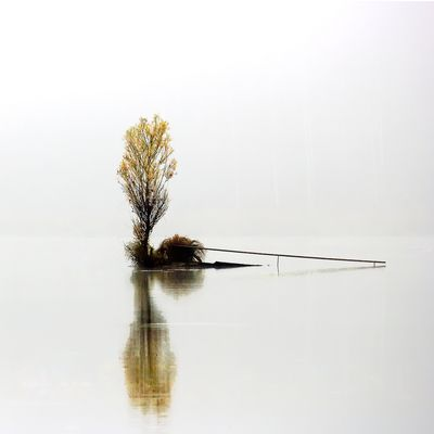 Epure d'automne