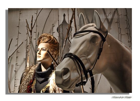 ...equus...
