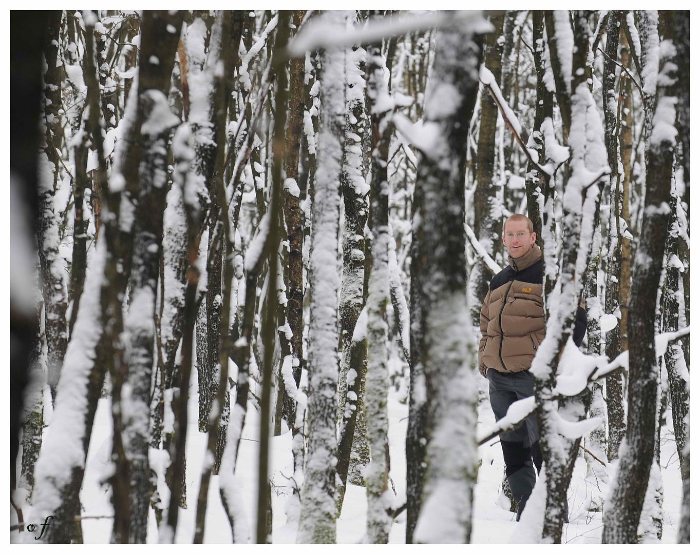 Er steht im Wald