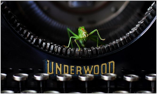 Er wollte eigentlich nach Hollywood ...