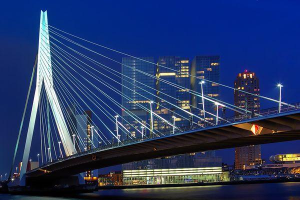 Erasmusbrücke und Skyline