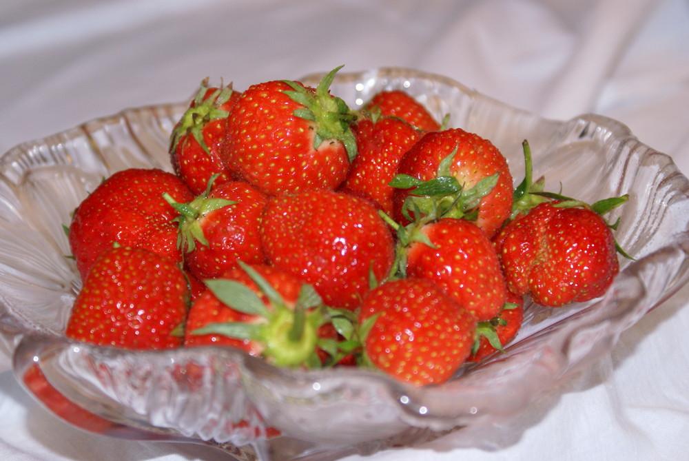 erdbeer zeit