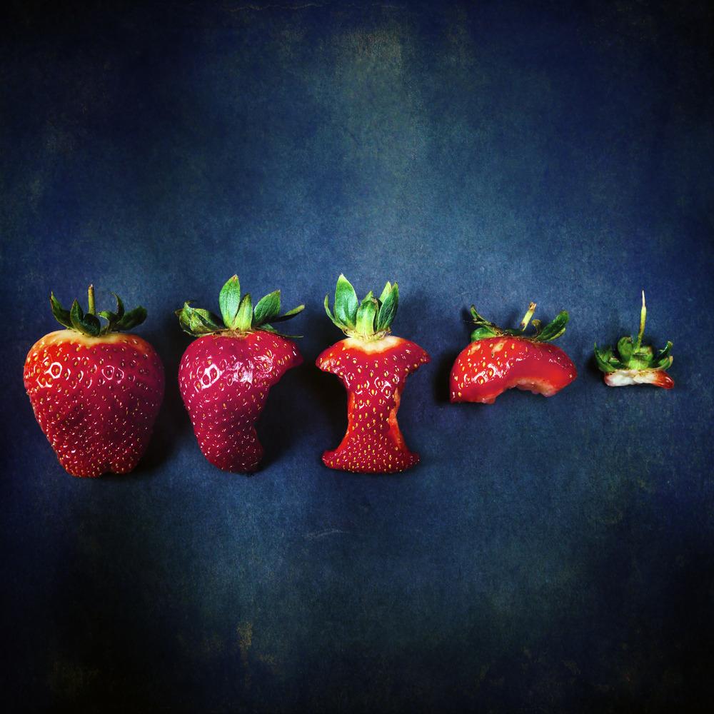 Erdbeer-Zeit