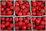 -Erdbeeren für ALLE!-