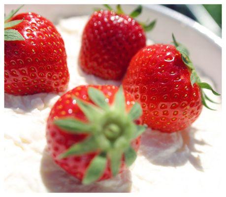 Erdbeeren in Sahne 2