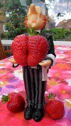 Erdbeerzeit - geile Zeit !