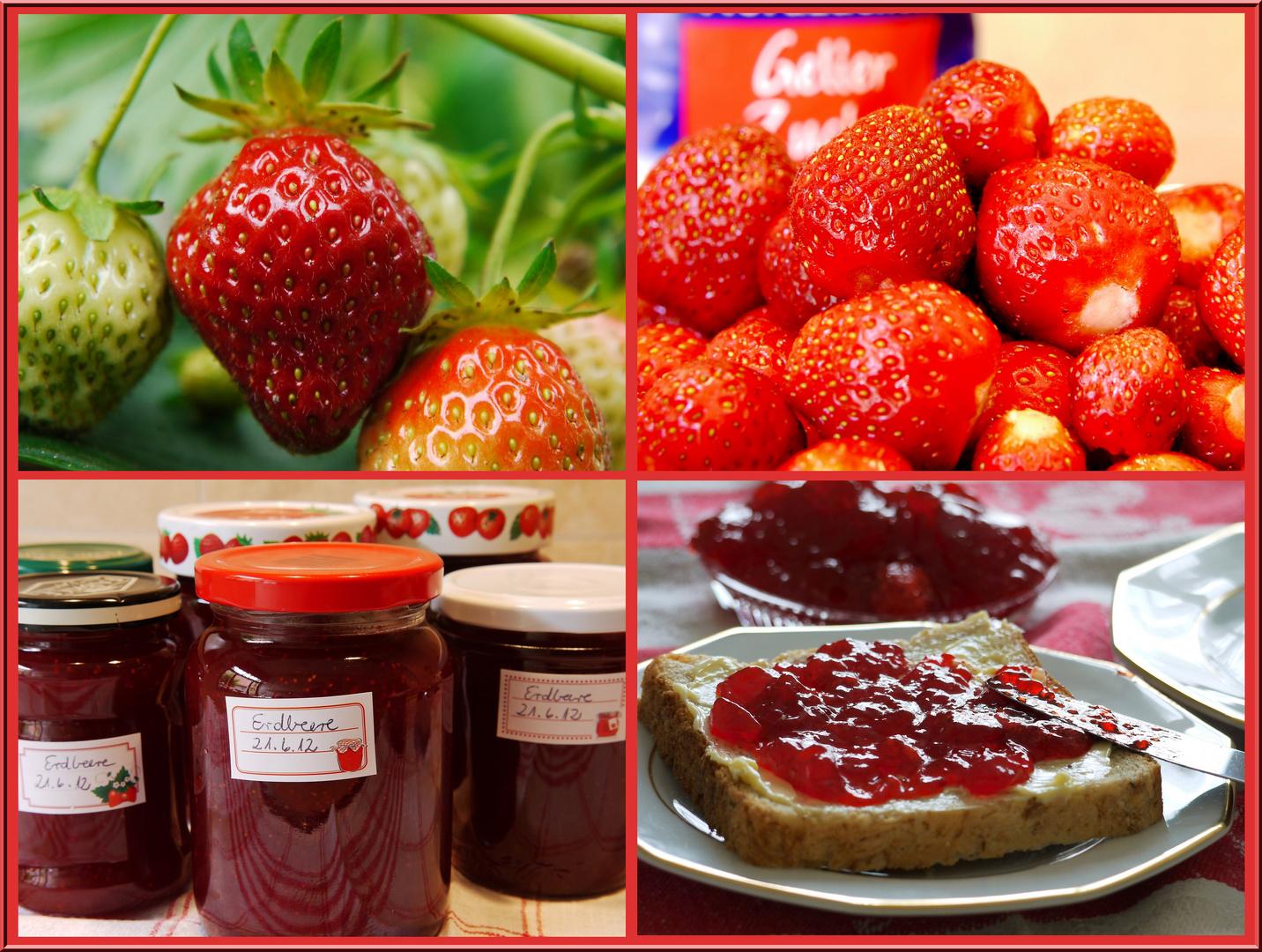 Erdbeerzeit - Marmeladenzeit!