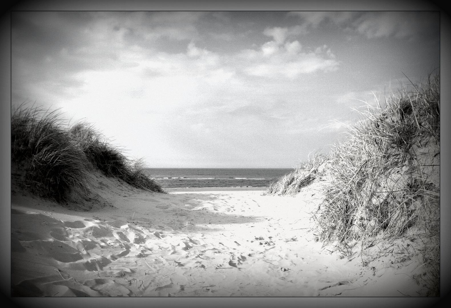- Erde - Europa - Nordsee - Baltrum - II
