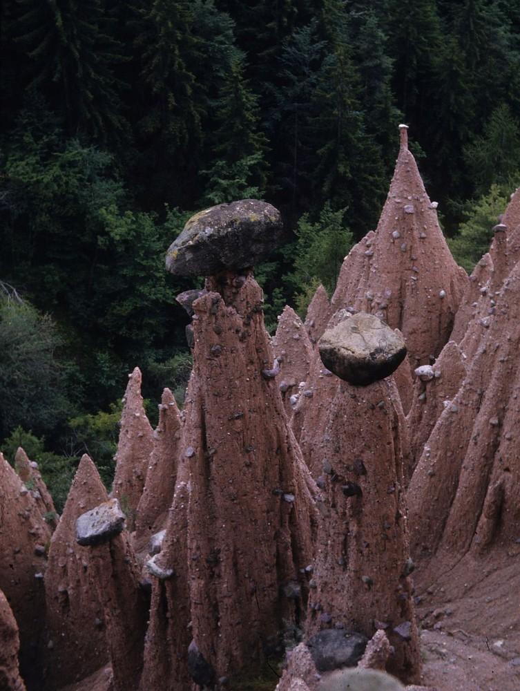 Erdpyramiden in Südtirol
