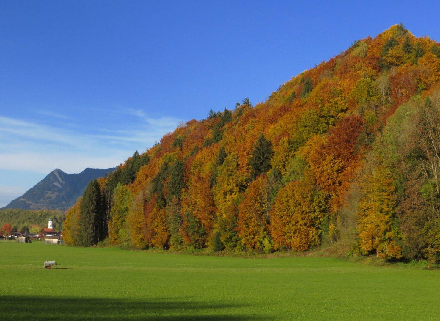 Erinnerung an den Herbst